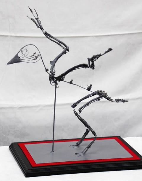 原始鳥類の新属新種と確認された「フクイプテリクス・プリマ」の骨格模型(福井県立大)=共同