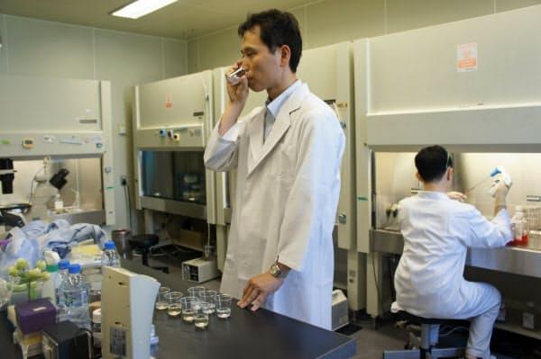 共同出資会社の社長に就いた金子裕司氏はキリンHDの健康技術研究所で熟成ホップの実用化に向けた研究を進めてきた(横浜市)
