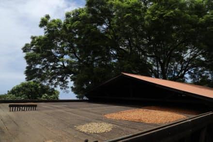 作業小屋の屋上にある「干し棚」。屋根は可動式になっている