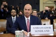 20日、米下院情報特別委員会の公聴会で証言するソンドランド氏=ロイター