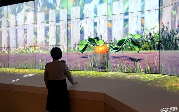 タッチ操作で野菜を育てて収穫する喜びを体験できる展示をした(19日、東京都中央区のメトアギンザ)