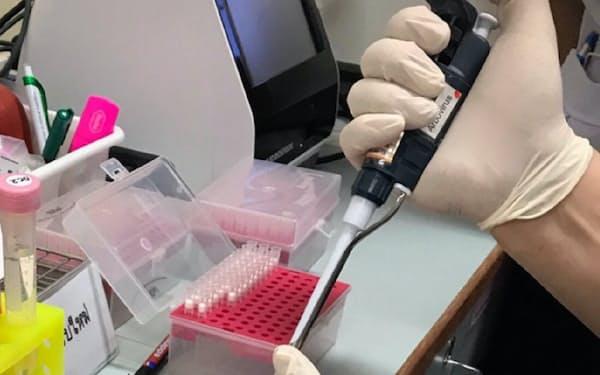 ビズジーンはタイで迅速検査キットの治験を始めた