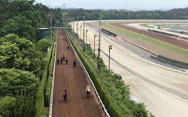 1985年開設の坂路が「西高東低」の原動力となった(滋賀県栗東市)