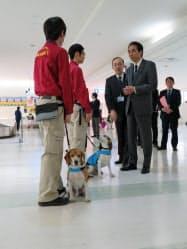 検疫探知犬の業務を視察する江藤農相(28日、羽田空港)