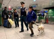 JR東日本などは東京駅構内で危険物探知犬による警備の実験をした(4日午後、東京都内)