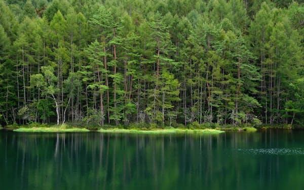 湖面に森を映す風景が魅力となっている御射鹿池