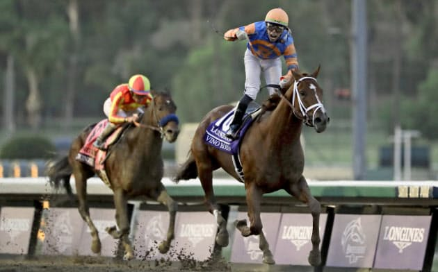米サンタアニタパーク競馬場では馬の事故死が問題視された(同競馬場でのブリーダーズカップクラシック)=AP