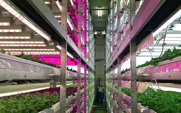 JA東西しらかわの植物工場(福島県白河市)