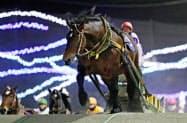 北海道帯広市で開かれた「ばんえい競馬」で、地方・中央競馬を通じ最多となる30連勝を達成したホクショウマサル=共同