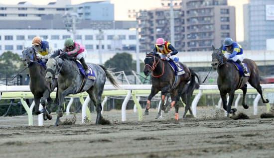 大井競馬場で行われた東京大賞典は史上最高の売り上げを記録した=共同