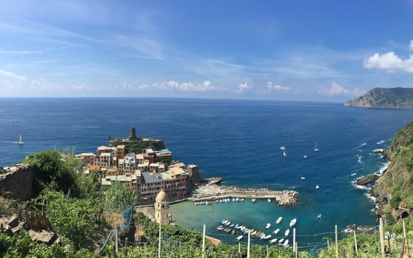 イタリア北西部のワイン産地、チンクエ・テッレでは海沿いの斜面にブドウ畑が広がる
