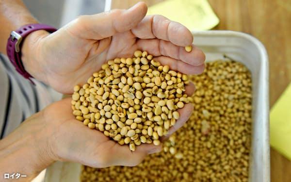 合意では、中国による米国産農産物の大量購入がうたわれた(2019年8月、米ノースダコタ州の大豆)=ロイター