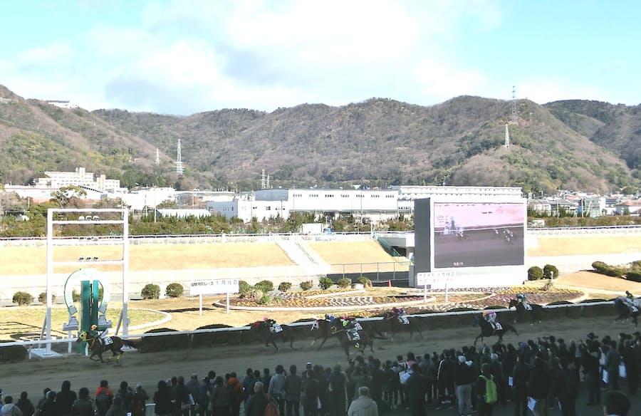 京都競馬場 改修