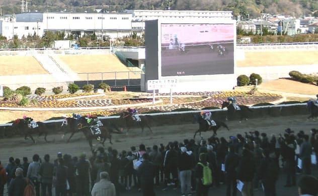 15日の姫路競馬再開初日には約3000人の観客が集まった
