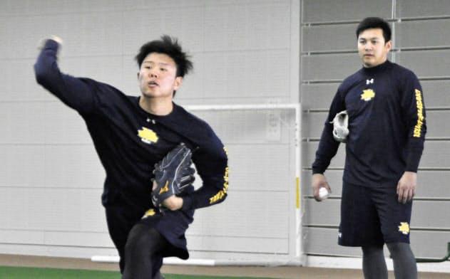 投球練習するDeNA・上茶谷。右は山崎(22日、沖縄県宮古島市)=共同
