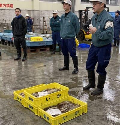 イカが少なく、寂しい競り(函館市水産物地方卸売市場、11月中旬)