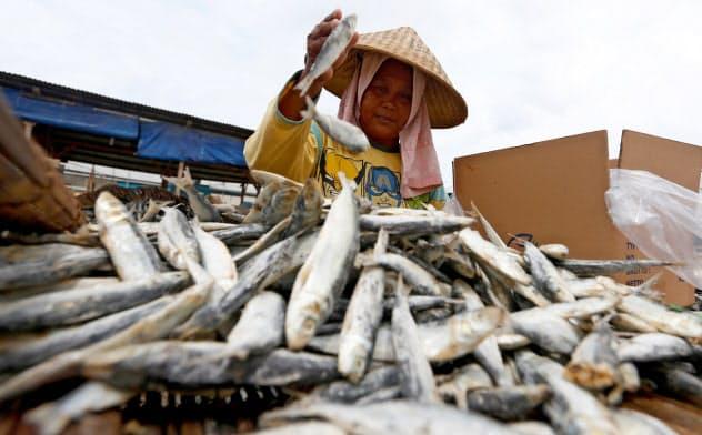 インドネシアは島国で漁業も盛んだ=ロイター