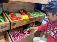 インドはタマネギを中心に野菜価格が上昇している