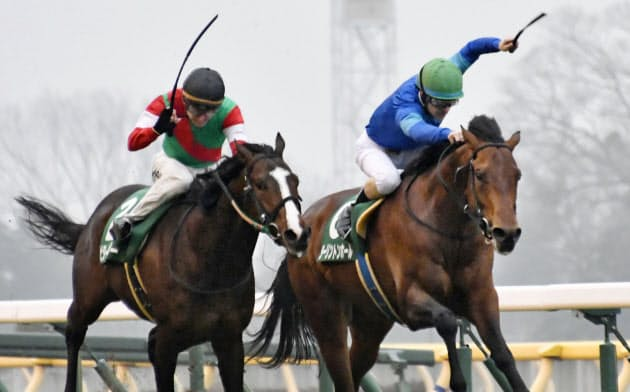 共同通信杯を制したダーリントンホール(右)と2着のビターエンダー(16日、東京競馬場)=共同