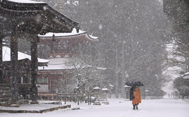 高野山が雪化粧