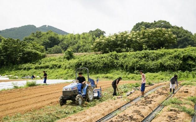楽天農業は有機栽培の農場を拡大する