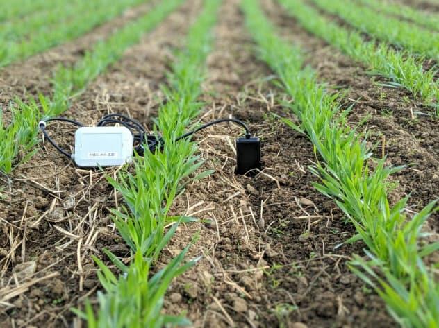 小型センサーは土壌の養分や水分、日照量など8種を組み合わせて分析できる