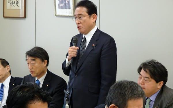 岸田派総会であいさつする岸田文雄政調会長(20日、都内)