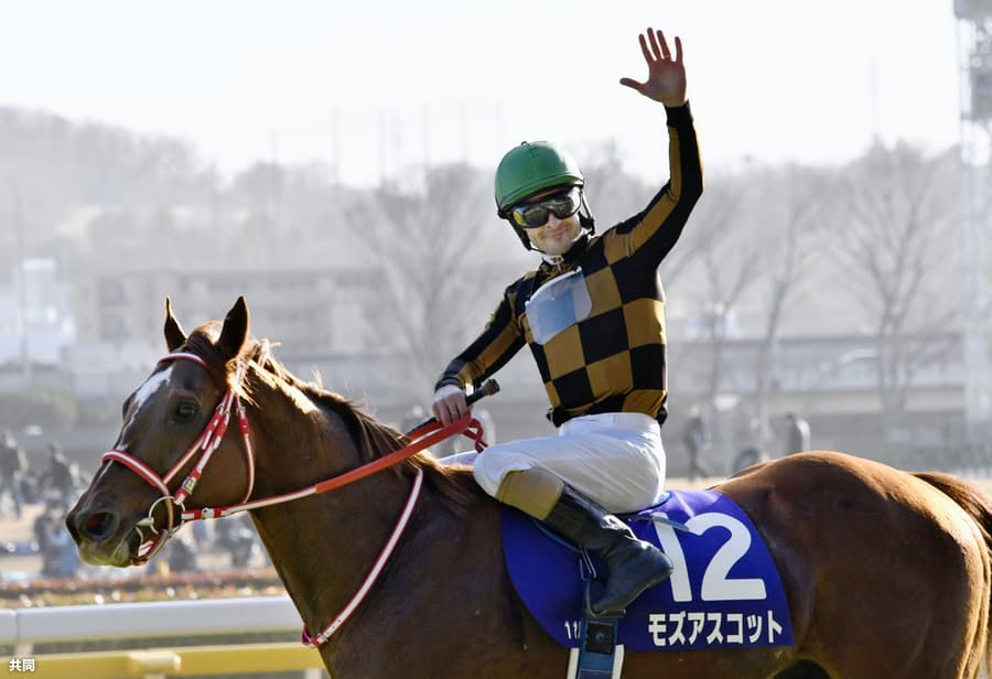 モズアスコットV、インティ14着 競馬のフェブラリーS: 日本経済新聞