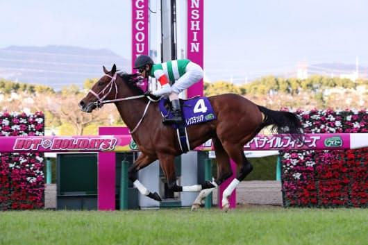 阪神JFを勝ち、最優秀2歳牝馬に選定されたレシステンシアは7日のチューリップ賞で始動(JRA提供)