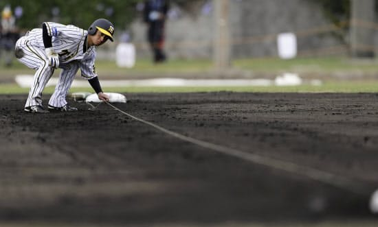 キャンプで一、二塁間にラインを張り走塁練習する近本=共同