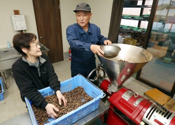 つばき油の製油工場を再建した石川秀一さん(右)と妻の春枝さん(10日、岩手県陸前高田市)