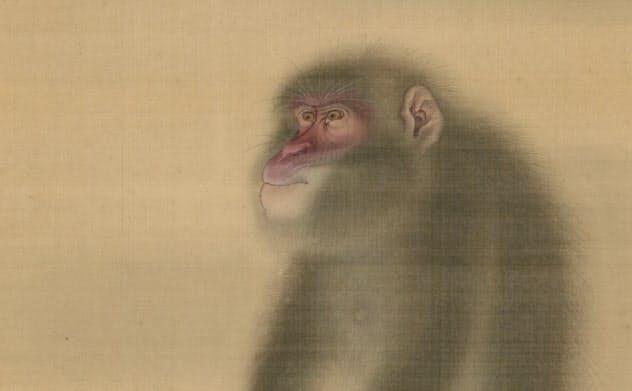 森狙仙「猿猴図」(部分、1787年中井竹山賛、大阪歴史博物館蔵)