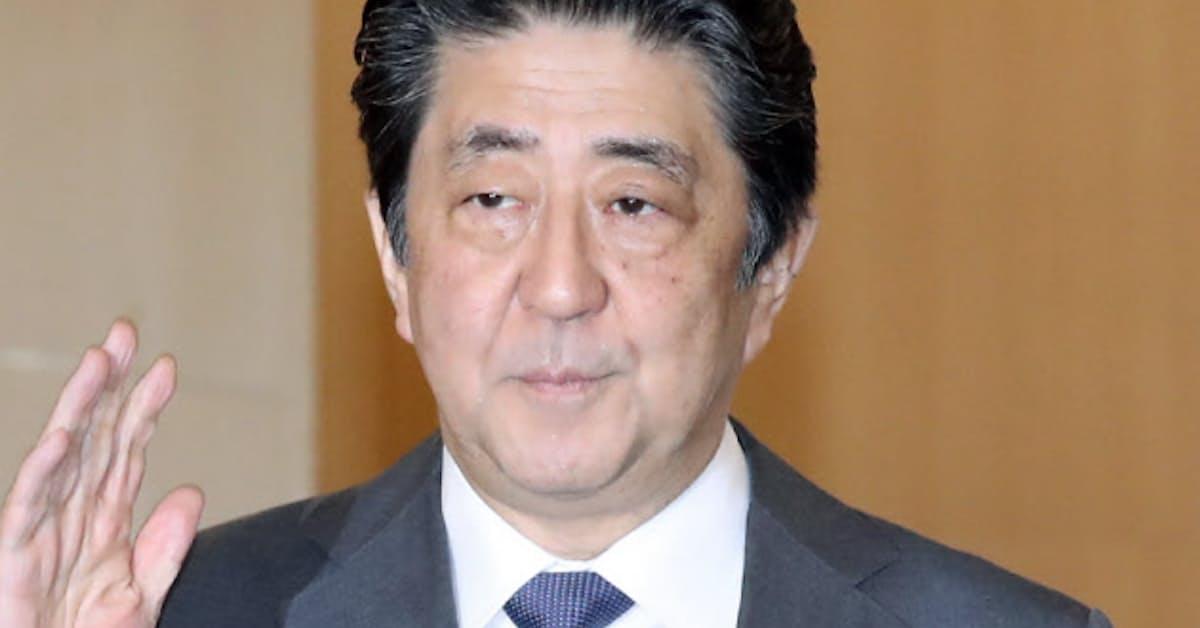 新型コロナ:首相「必要に応じ大胆な施策とる」 自民税調会長に: 日本経済新聞