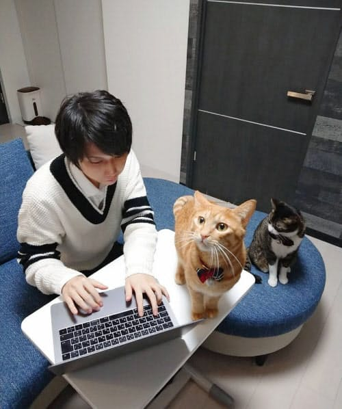2匹の猫と共に札幌市の自宅で働く社員の藤本さん