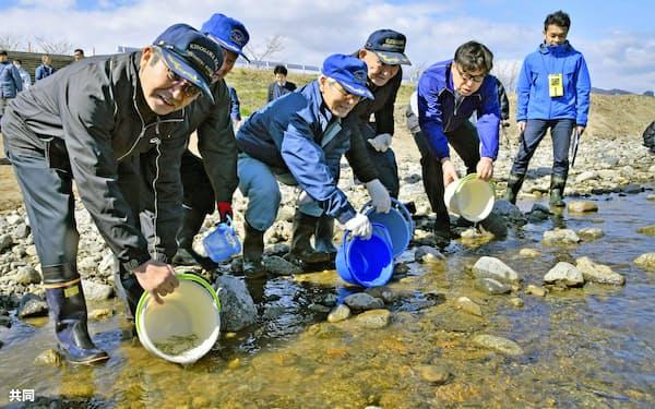 木戸川にサケの稚魚を放流する地元漁協関係者(17日午前、福島県楢葉町)=共同