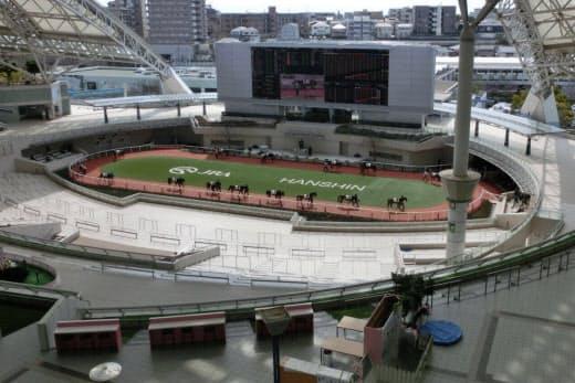 無観客の中でも出走馬は下見所(パドック)に姿を現す(1日、阪神競馬場)