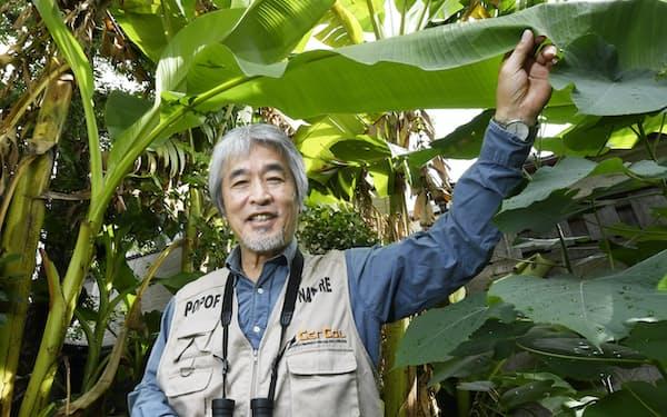やまぎわ・じゅいち 1952年、東京都生まれ。京都大学大学院の理学研究科修了後、京都大霊長類研究所助手などを経て京都大大学院理学研究科教授。2014年から現職。日本学術会議会長を兼任。19年6月まで国立大学協会会長も務めた。問いを立て、答えを探すために冒険をする。「常識を超えたものに遭遇することがある。それが研究の醍醐味」と説いてきた。(京都市の自宅で)