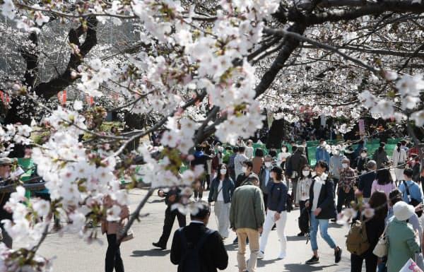 花は見ごろ迎えたが、例年に比べて混雑していない上野恩賜公園(21日、東京都台東区)