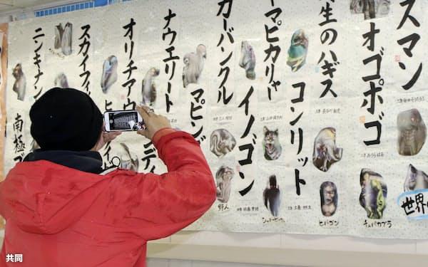 青森県弘前市で開かれた書道展。未確認生物の名前などが書かれた作品が並ぶ(10日)=共同