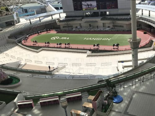人けのない阪神競馬場のパドック