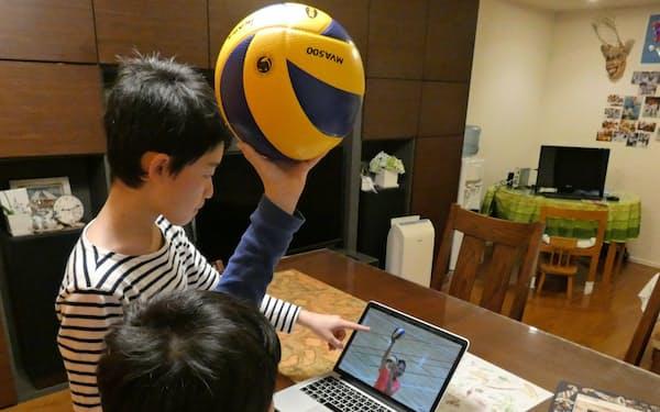 ライブ配信されるオンラインの小中学生向けバレーボール教室が人気だ