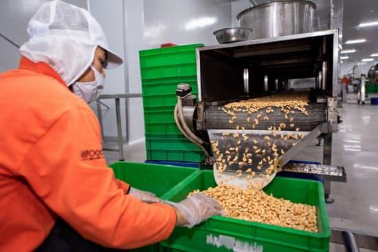 ベトナム有数のカシューナッツ生産企業ラフーコの工場(ロンアン省)