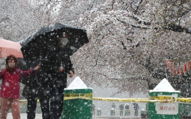 東京都心で積雪1センチ 3月下旬は32年ぶり