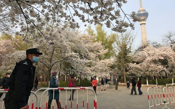 北京・玉淵潭公園には多くの花見客が訪れた