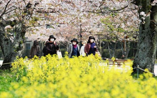舞鶴公園で散歩する人たち(8日午後、福岡市)=沢井慎也撮影