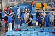 仲買人がかごに入れられた魚を次々と競り落としていった(8日、福島県浪江町)