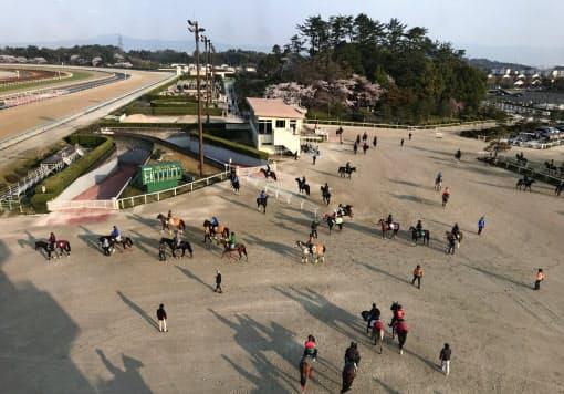 東西の人馬の移動制限など、新型コロナウイルスの感染拡大防止策を講じ、競馬開催は続行されている(滋賀県栗東市のJRA栗東トレーニング・センター)