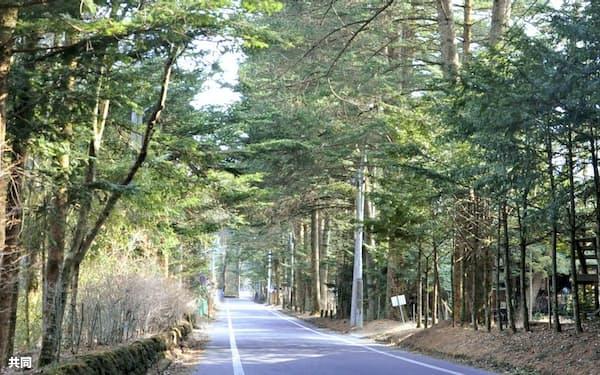 長野県軽井沢町の別荘地(8日)