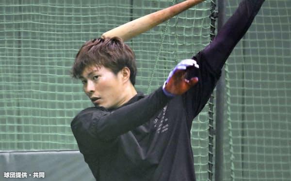 室内練習場で打撃練習する阪神・北條(18日、兵庫県西宮市)=球団提供・共同