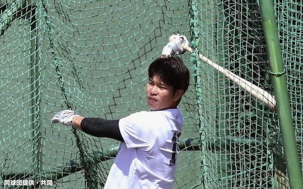 打撃練習する巨人・大城(23日、川崎市のジャイアンツ球場)=同球団提供・共同